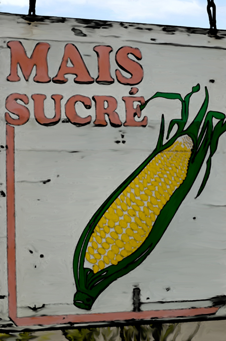 affiche maïs sucré