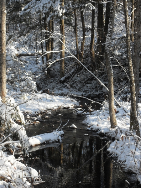 Les premières neiges