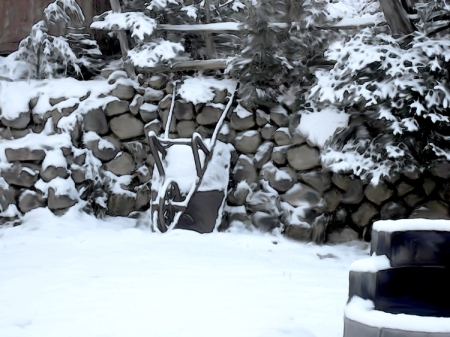 Brouette sous la neige