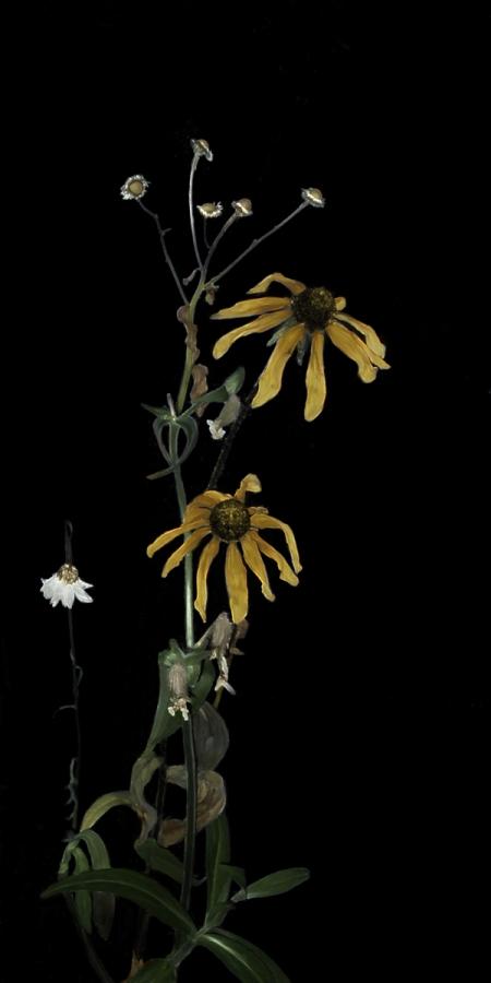 bouquet de fleurs fanées