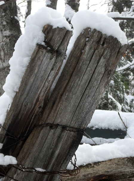 15 cm de neige